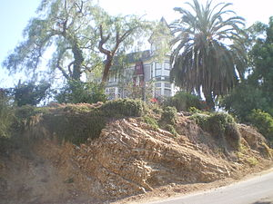 Smith Estate (Los Angeles) - Smith Estate from the base of El Mio Street