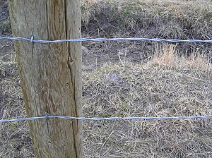 Closeup of a smooth wire fence without barbs