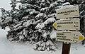 Sněžka Krkonoše.jpg