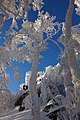 Sninský kameň (v zime) 038.jpg