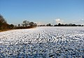 Snow-covered fields - geograph.org.uk - 1630587.jpg