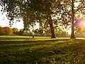 Southwark Park Sporting Green.JPG