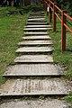 Stairway to heaven^ Lyndhurst - geograph.org.uk - 154943.jpg