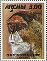 Stamp of Abkhazia - 2000 - Colnect 1004757 - Cercopithecus neglectus.jpeg