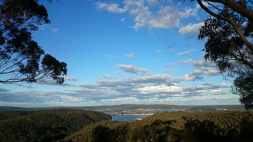 Staples Lookout (15411525226)
