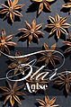 Star Anise Magazine Layout (4299687941).jpg