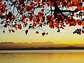 Starnbergersee mit Zugspitzmassif in Herbststimmung.jpg