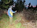 Starr-170225-7074-Rubus niveus-Forest with bat detector at night-Lower Waiohuli Trail Polipoli-Maui (33341302166).jpg