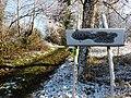 Steenbergse bossen - panoramio.jpg