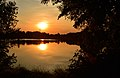Steinwedeler Teich Sonnenuntergang 2.jpg