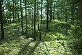 Stenkumla gravfält 4-1 - KMB - 16001000006838.jpg