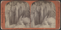 Stereoscopic views of Niagara Falls, by Reilly, John James, 1839-1894.png