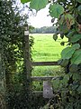 Stile in the lane - geograph.org.uk - 553620.jpg