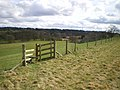 Stile leading down into the Worfe Valley - geograph.org.uk - 1780250.jpg