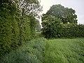 Stile on footpath - geograph.org.uk - 431150.jpg