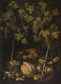 Still Life with Fruit and Vine (Pietro Paolo Bonzi) - Nationalmuseum - 17345.tif