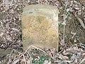 Stuhlgraben am Waldrand GH.jpg