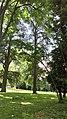 Sucrerie d'Eppeville, le parc du château 8.jpg