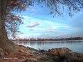 Sunrise Over Lady Bird Lake (190416553).jpeg