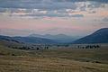 Sunset in Lamar Valley (3679493942).jpg