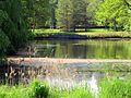 T-Teich FriedhofOhlsdorf.jpg