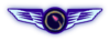 TWA badge 3.png