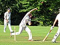 Takeley CC v. South Loughton CC at Takeley, Essex, England 083.jpg
