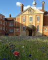 Talbot hall wild flower meadow lmh.png