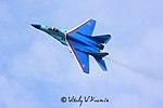 Tambov Airshow 2008 (64-13).jpg