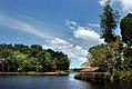 Tasek Merimbun Heritage Park.Brunei. (9565514695).jpg