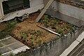 Telhado verde Casa Jaya 10.jpg