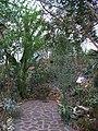 Teplice, skleník Tropicana, xerický skleník (01).jpg