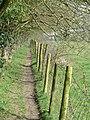 The Chalkland Way - geograph.org.uk - 1250417.jpg