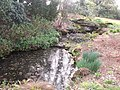The Dell at Sandringham-4573970195.jpg