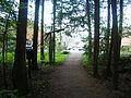 The Gatlinburg Trail Running Into the Town.JPG
