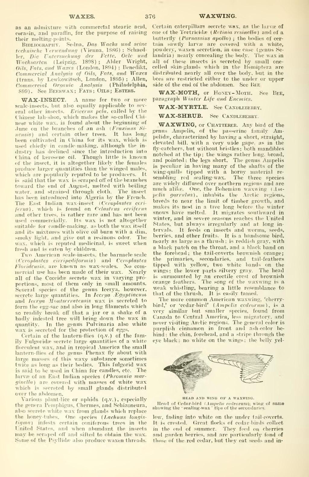 Page:The New International Encyclopædia 1st ed  v  20 djvu