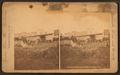 The Suspension Bridge, Nashville, Tenn, by Union View Co..png