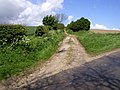 The Wolds Way - geograph.org.uk - 174352.jpg