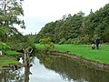 The stream, Golden Acre Park - geograph.org.uk - 259284.jpg