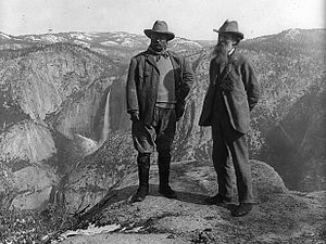 Sierra Club - Theodore Roosevelt and John Muir in Yosemite National Park, c. 1906