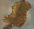 Theodore gericault etude de peau de panthere.jpg