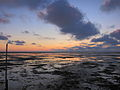 Tideland Sunset (4745175561).jpg