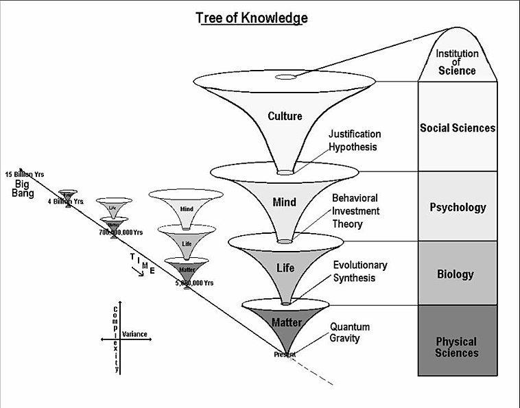 theory of knowledge does the internet Subjectivism subjectivism is an epistemological theory it is a theory of knowledge, and how it is achieved subjectivism holds that knowledge is generated from the.