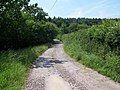 Track From High Farm - geograph.org.uk - 467624.jpg