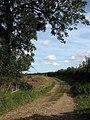 Track to Folly Farm - geograph.org.uk - 570179.jpg