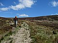 Track with Hiker - geograph.org.uk - 1850447.jpg