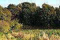 Tree lined pool west of Hartshorne - geograph.org.uk - 615617.jpg