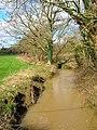 Tributary of the Cuckmere River, Lea Bridge - geograph.org.uk - 352449.jpg