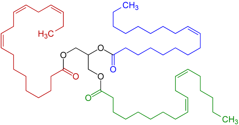File:Triglyceride unsaturated Structural Formulae V.1.png