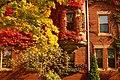 UPEI colours (1638950214).jpg